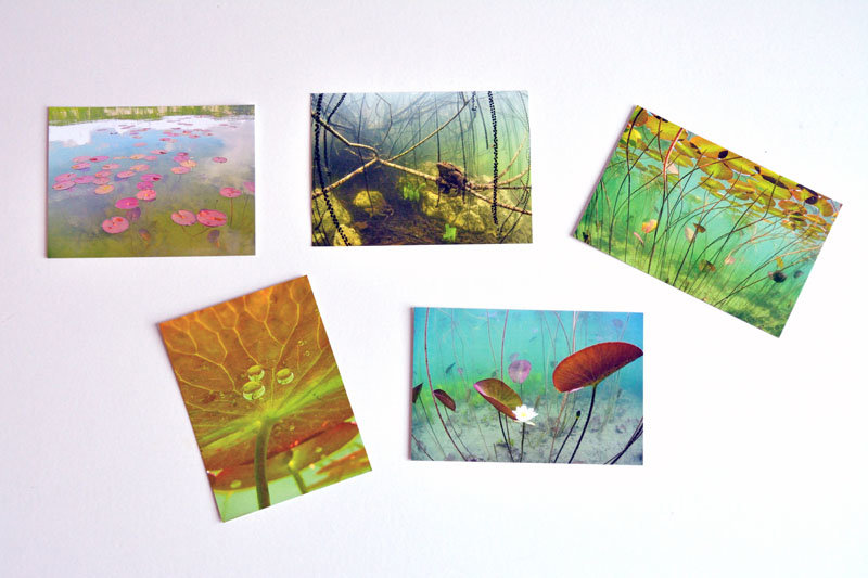 Cartes postales Masson